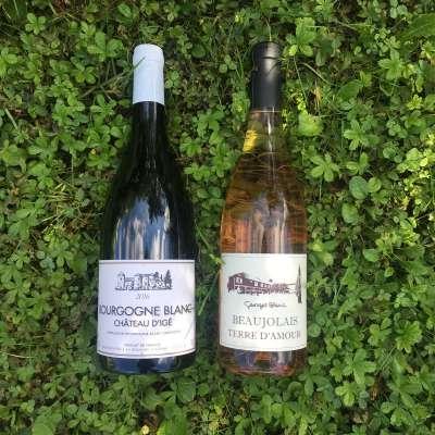 Vins Domaines Georges Blanc